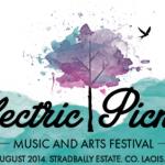 electric-picnic-2014-lineup