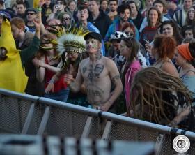 sunflowerfest 2014 crowd shot