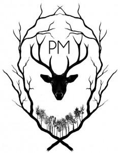 peter mcveigh - PM - album cover