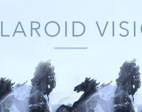 polaroid vision - logo