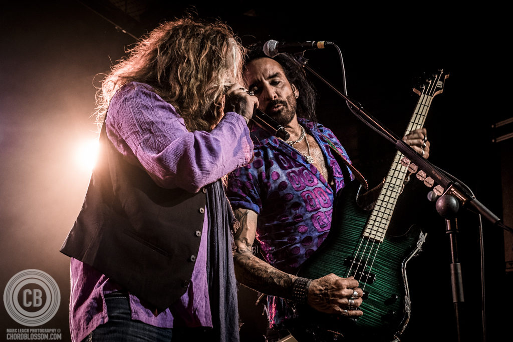 The Dead Daisies - Photo by Marc Leach Photography