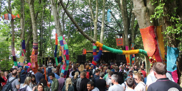Stendhal Festival 2018 Crowd Shot Woodland