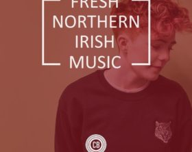 fresh northern irish music - roe