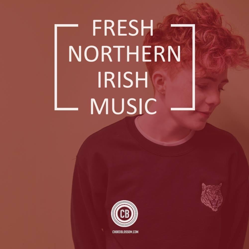 fresh northern irish music - roe